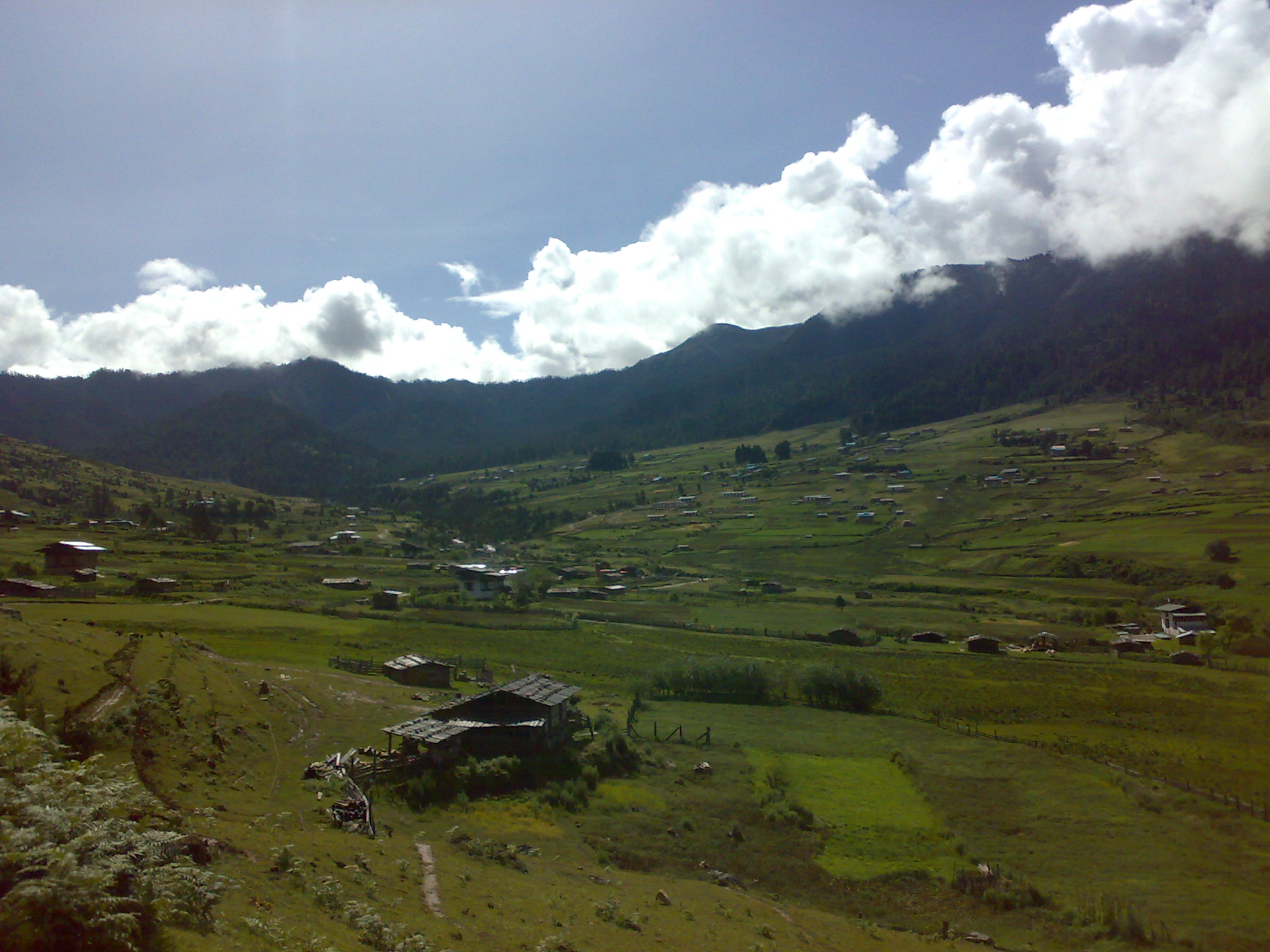 Gangtey Nature Trails and Hikes, Phobjikha Valley